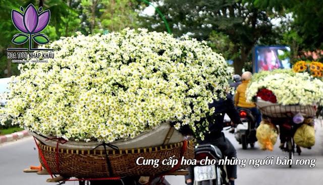 Hoa tuoi nhap khau