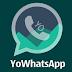 YoWhatsApp V3 Apk - Download atualizado