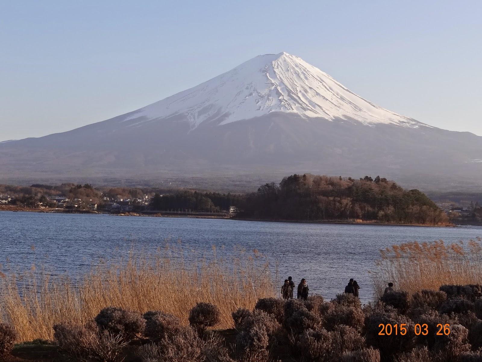 H&D幸福小屋: 2015年日本東北.東京.河口湖自由行(58)最美的富士山在大石公園