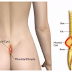 Do Not Ignore This! This May Be The Hidden Reason of Your Lower Back Pain