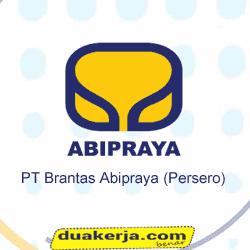 Lowongan Kerja Terbaru PT Brantas Abipraya (Persero) Hingga 20 Agustus 2016