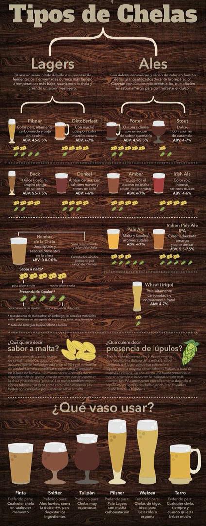 Infografía : Tipos de cerveza