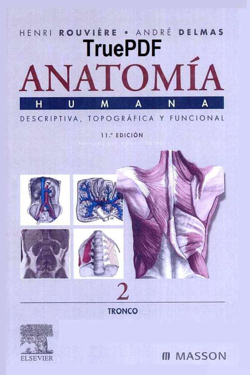 Anatomía Humana. Tomo 2: Tronco, 11va Edición – Henri Rouvière ...