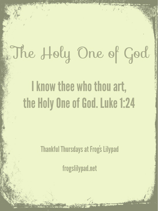 Frog's Lilypad: The Holy One of God - One day, every tongue will profess Jesus is the Holy One of God. Thankful Thursdays Linkup l frogslilypad.net