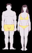 Endomorph body | www.thefittestblogger.com