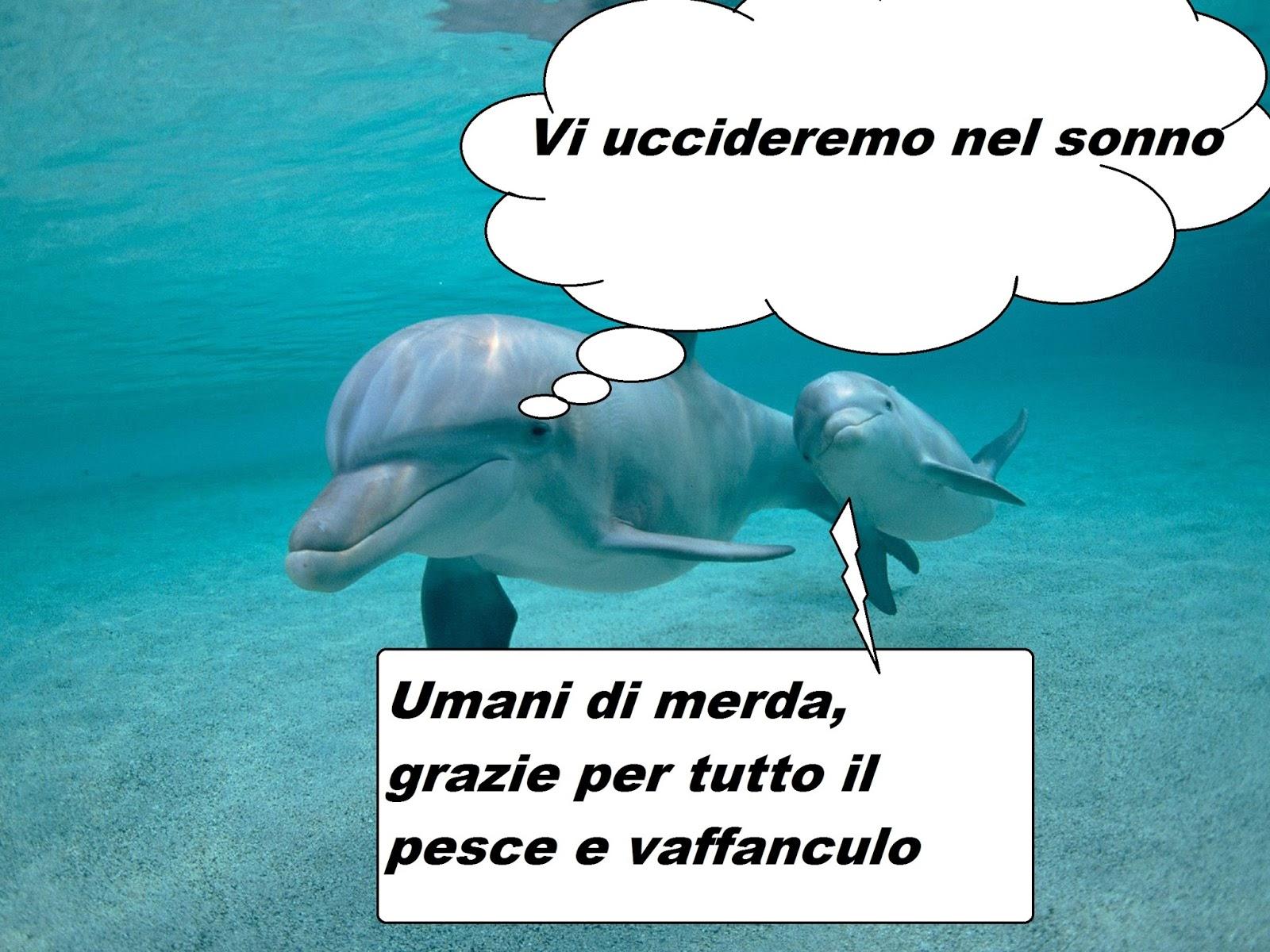 quanto grande è un pene delfino video XXX XHamster