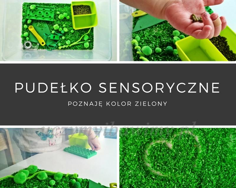 Pudełko sensoryczne - poznaję kolor zielony
