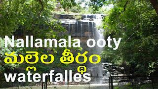 Mallela teertham waterfalls | nallamala ooty