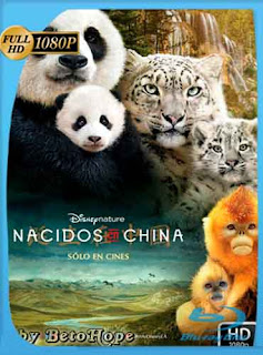 Nacidos En China HD [1080p] Latino [Mega] SilvestreHD