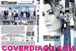 Grey´s anatomy Season 14 - Decimocuarta temporada