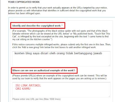 DMCA Complaint 2