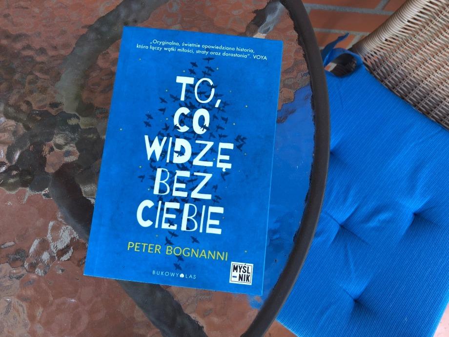 To, co widzę bez ciebie | Peter Bognanni