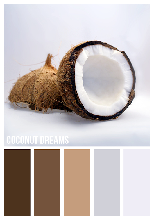 Gold On The Ceiling: Coconut dreams