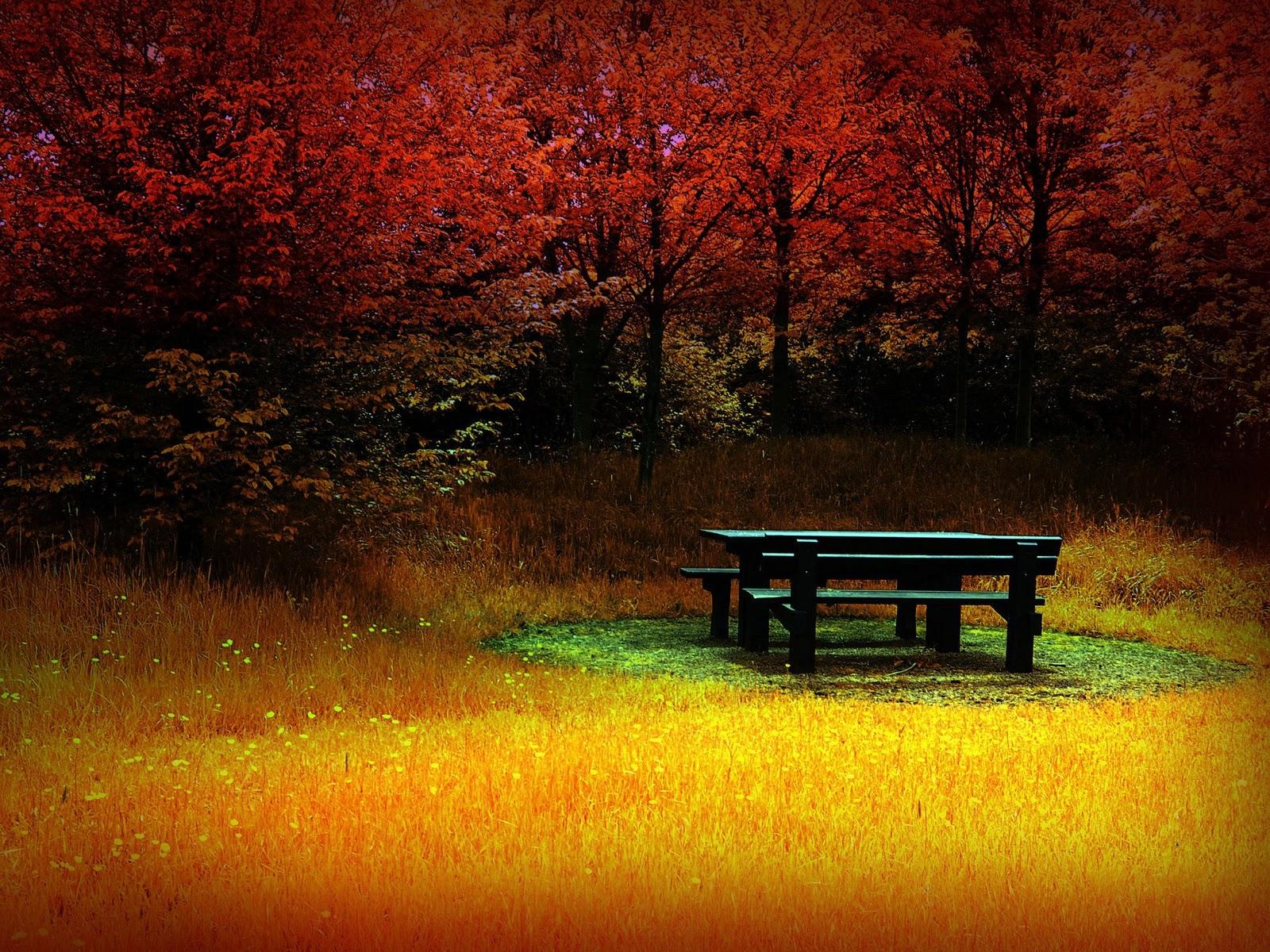 vermont in autumn hd wallpaper - photo #26