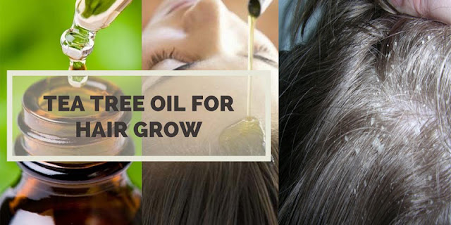 How To Use Tea Tree Oil For Itchy Scalp And Dandruff - See Natural Home Remedies