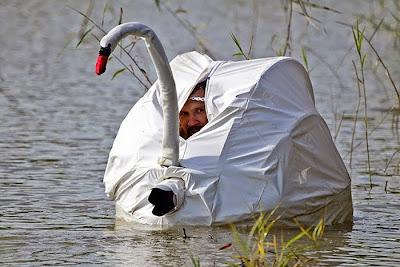 Fotógrafo con camuflaje de cisne en un lago