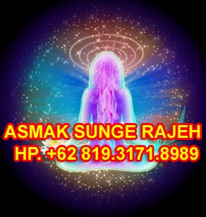 IJAZAH PROGRAM GURU BESAR ASMA SUNGE RAJEH (ASR)