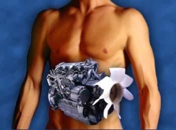 La gente también piden metabolismo anabolismo y catabolismo