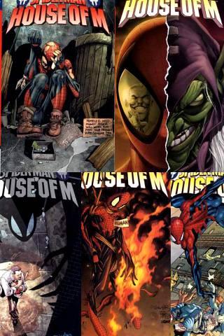 House of M: Spider-Man 1-5 PDF
