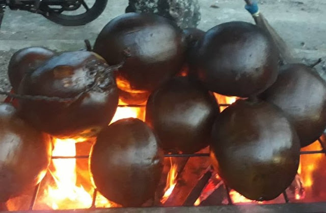 Health: Young Coconut Efficacious Cures Malaria Pain!  Total recovery