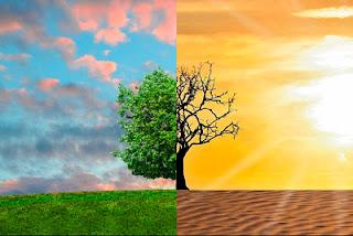 Aumento de temperaturas y salud
