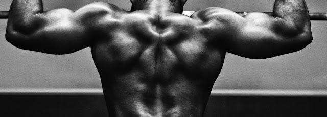 comment se muscler le dos grace au rameur