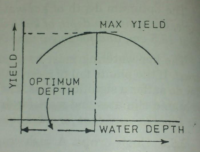 Efficiency of water conveyance