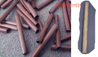 bamboo blowpipe