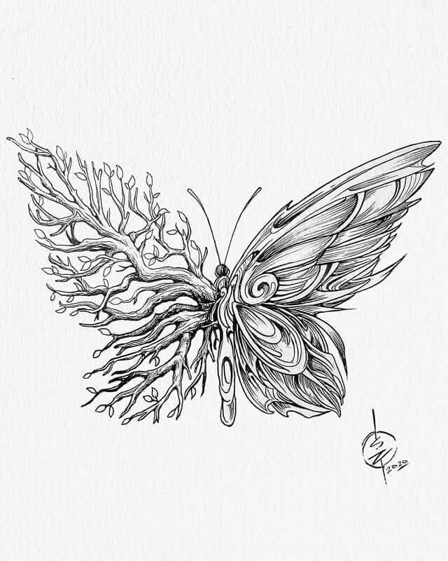 09-Butterfly-Animal-Drawings-Syahid Zain-www-designstack-co