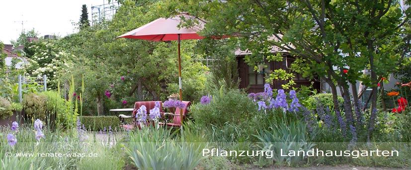 Blumenbeet und Bepflanzung Garten, pflegeleicht, Obstgehölze, Staudenbeete, schöne Beete für den Garten