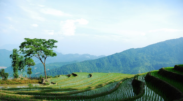 Ha Giang Upland - The Journey of Sharing 1