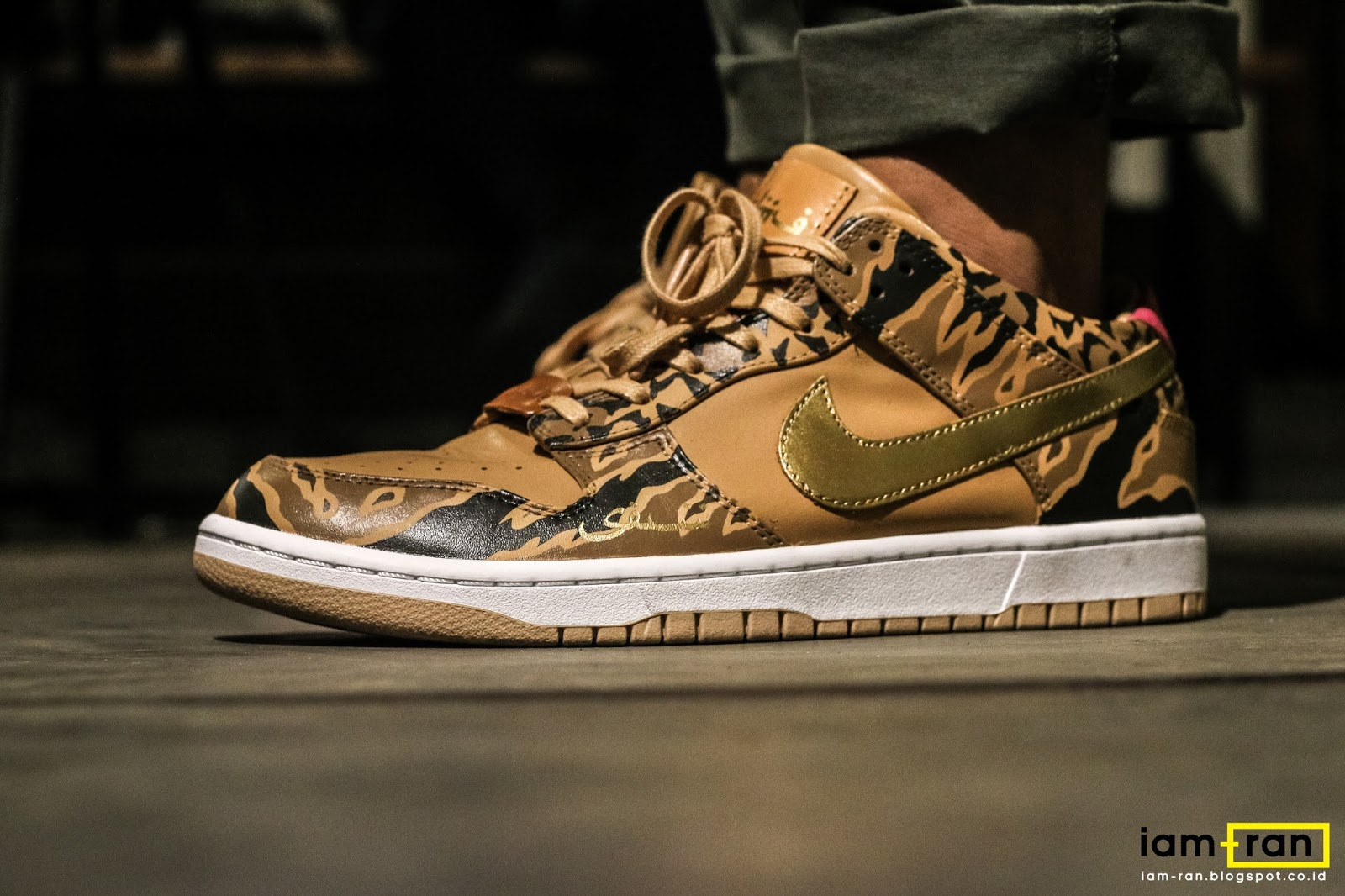 wholesale dealer 6b4ee 76996 ON FEET  birawasena - Nike Dunk lux X SBTG -
