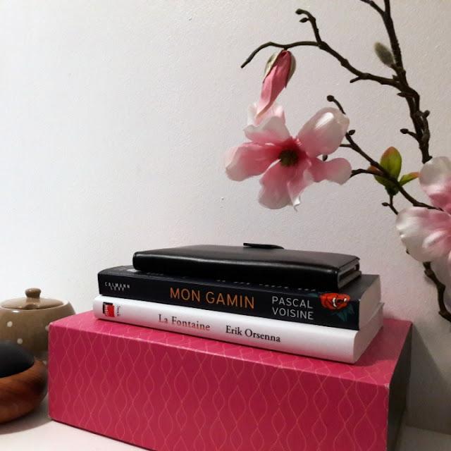 Rentrée littéraire 2017 : mes favoris