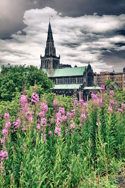 Cattedrale-Glasgow