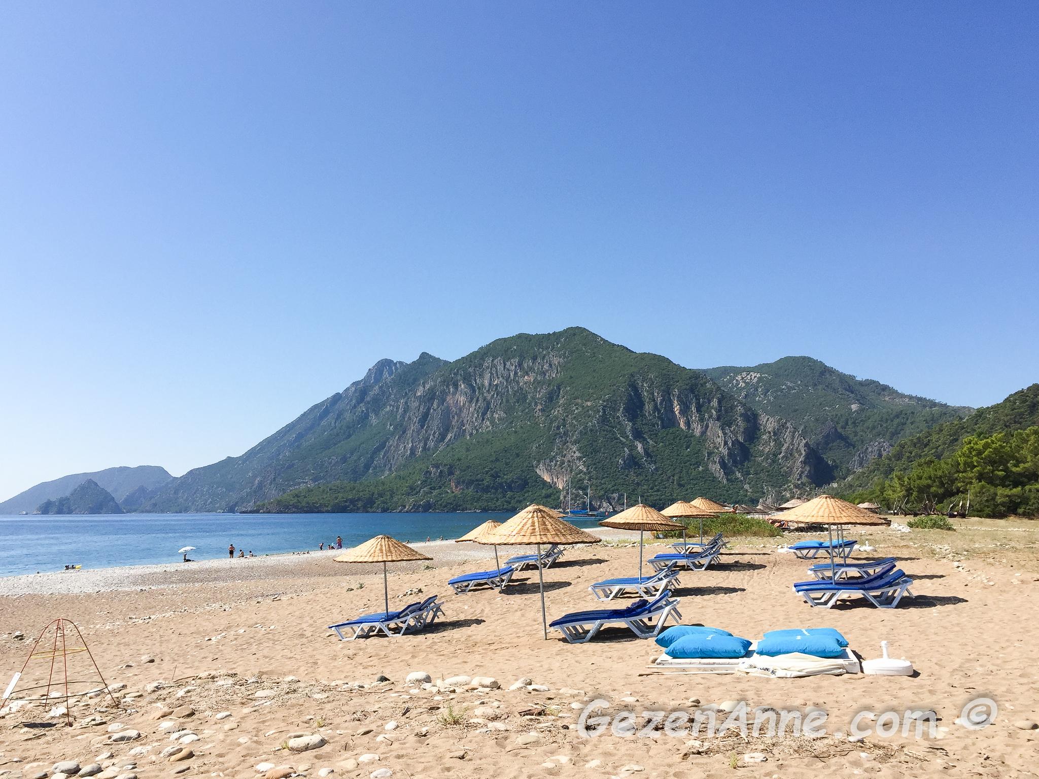 Çıralı sahili kumsalı, Caretta caretta yıvası ve şezlonglar arkada da Olimpos, Antalya