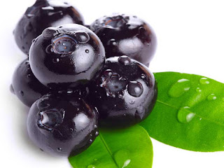 bilberry fruit images