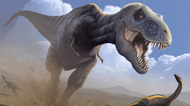 Tyrannosaurus rex couldn't run says new research