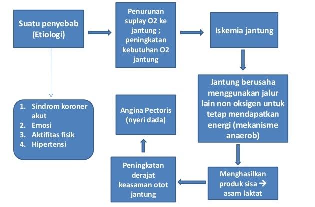 Patofisiologi Patogenesis Angina Pectoris Pektoris