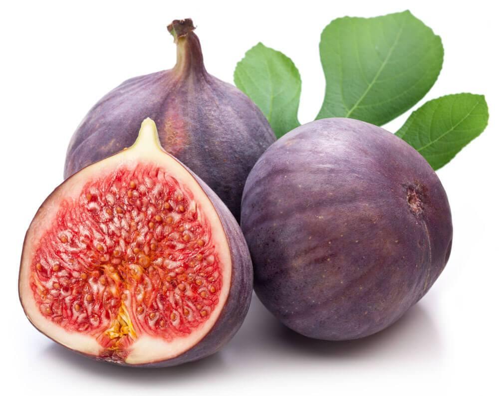 التين Figs Ficus Caria Fruit-Ficus%2BCaria-1