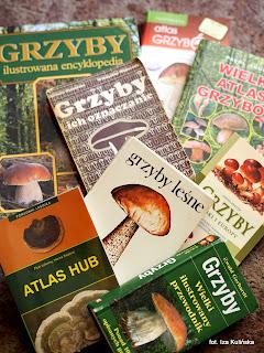 atlas grzybow, mykologia, rozpoznawanie grzybow, na grzyby, skad czerpac wiedze, ksiazki, poradnik, ksiazka, grzybobranie