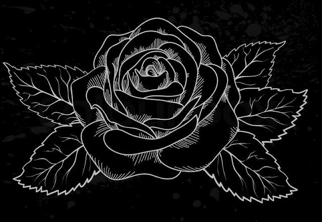 صور خلفيات, صور ورد, ورد أسود, ورد نادر, flower  black, Photos,