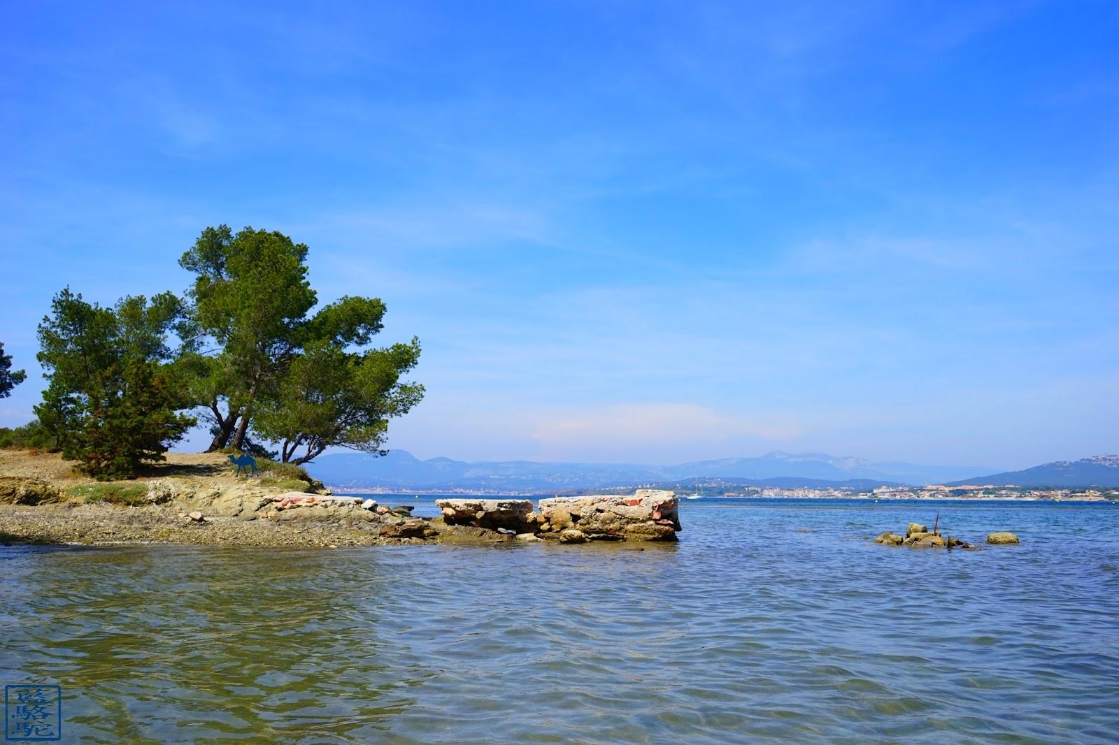 Le Chameau Bleu - L'ile des Embiez