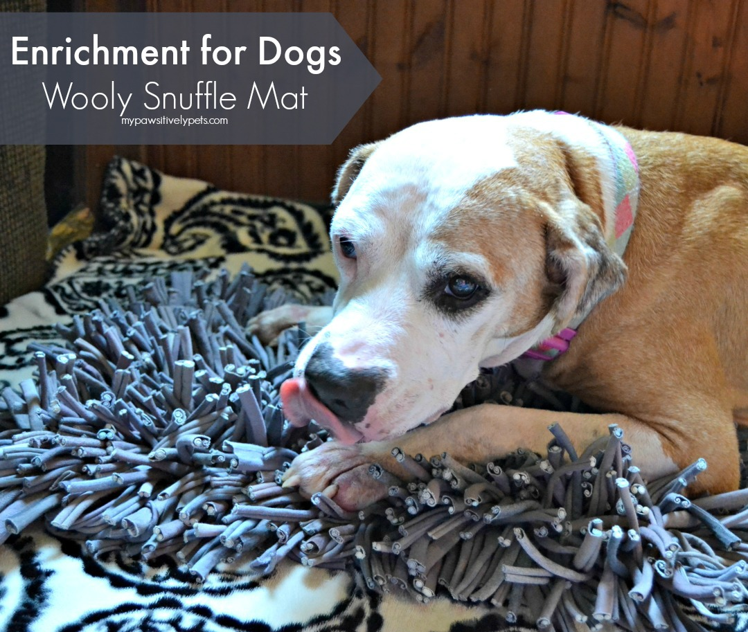 Paw5 wooly snuffle mat giveaway pawsitively pets for My dog s breath smells like fish