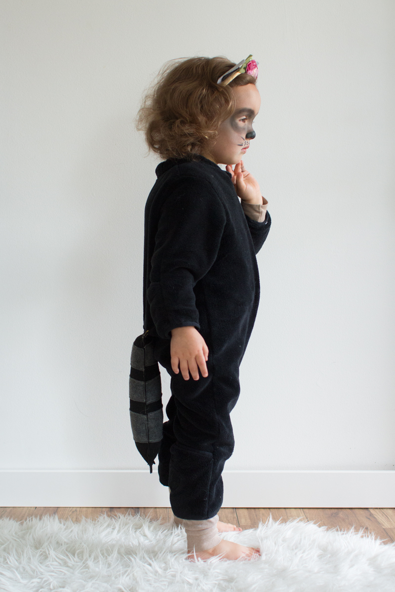 DIY Raccoon toddler costume