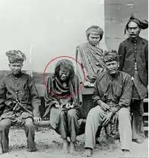 "Wow..!! Tjoet Nyak, ""The Queen of Aceh Battle"", Wanita Perkasa, Pahlawan Yang Sebenarnya dari Suatu Realita Jamannya, Please Share..!!!"