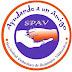 Ordenanza Municipal contra el Maltrato Animal en Villarrica