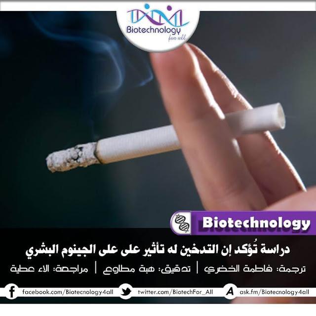 دراسة تؤكد أن التدخين له  تأثير سلبي بالمدى البعيد على الجينوم البشري