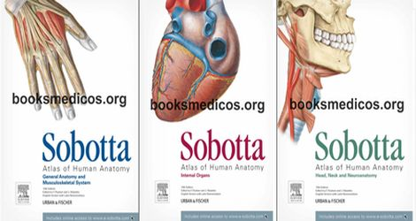 Atlas De Anatomia Humana Sobotta Pdf