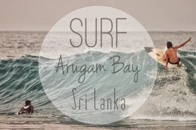 Where learn to surf in Sri Lanka