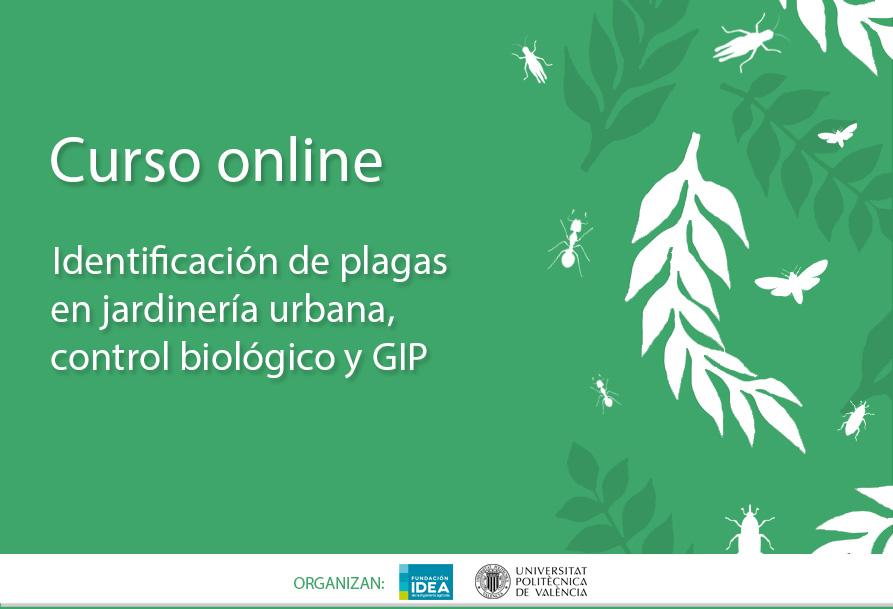 Aejeco curso online identificaci n de plagas en for Curso jardineria